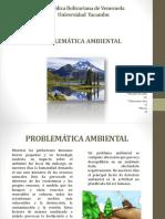Exposicion Estudios Ambientales (Conclusion)