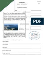 56154423-GUIA-PRACTICA-TEXTOS-INFORMATIVOS.doc