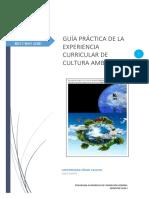 GUÍA_PRÁCTICA_5 Cultura Ambiental