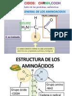Clase 2 Aminoácidos