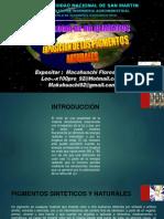 Pigmentos Expo 01.06.17