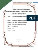 CONSERVACION-DE-FABIO.doc