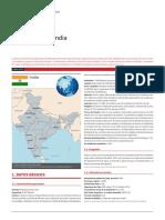INDIA_FICHA PAIS.pdf
