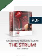 Ilya Efimov Acoustic Guitar Strum Manual