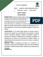 Acta Del Idioma.