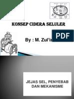 KONSEP CIDERA SELULER