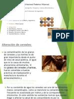 Alteracion de Cereales Legumbres
