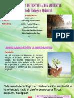 Métodos de Restauración Ambiental EXPOS