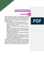 Matemáticas_ER