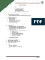 3.-INDICE GENERAL DE CAURI.doc