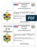 BSP Sample Certificate (Cebu Council)