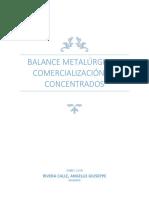 3pc.balance Metalurgico y Comercializacion