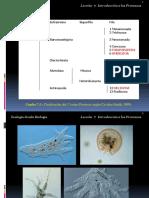 Zoologia Biologia Leccion07 Protozoos (1)