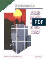 2.- Motores de media tension.pdf
