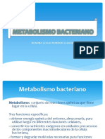 METABOLISMO-BACTERIANO.pptx