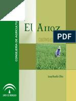 cultivo de arroz en ecológico.pdf