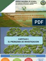 Presentacion Tesis Para Optar El Grado de Ingeniero Ambiental