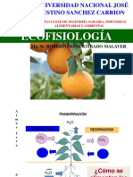 ECOFISIOLOGIA - FOTOSINTESIS - C3 C4.pptx
