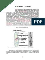 Unidad 5 Ciliados.pdf