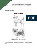 Estandar Chihuahueño FCI218-Es
