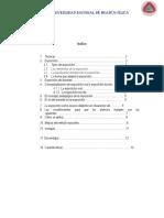 Monografia de Tecnicas Expositivas de Un Docente