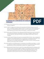 El Tratamiento de La Enfermedad de Parkinson Con Acupuntura Abdominal