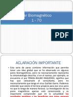Pares Biomagnéticos Completos del 1 al 316.pdf