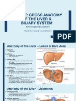 table e - liver anatomy   biliary system