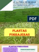 Características de Una Buena Planta Forrajera. Factores Ecológicos Climáticos Y BIOTICOS