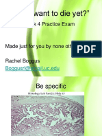 Practice Exam 4