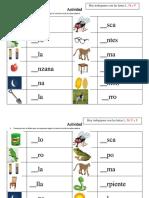 Actividad 1 lectoescritura nivel Primero básico (chile) Primaria
