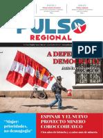 Pulso Regional N° 13