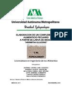 uam tesina inventaio porcino.pdf