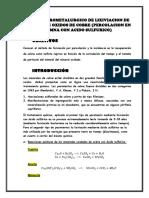 Informe 6 Procesos Hidrometalurgicos Percolacion