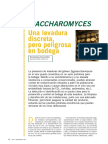 Guserbiot_Enologia_Zygosaccharomyces
