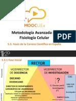 5.3. Fases de La Carrera Científica en España