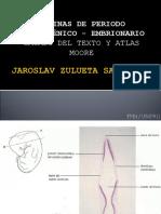 Laminas de Embrio-- Jzs