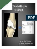 Anatomia Aplicada New