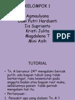 PPT tutor mur.pptx