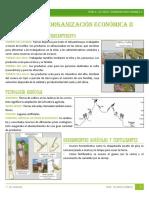 [Historia Del Perú] Tema 4. Los Incas. Organización Económica II (La Agricultura en El Tahuantinsuyo)