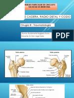 Fractura de Cadera, Radio Distal y Codobbbbpptx