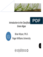 Classification Green Algae