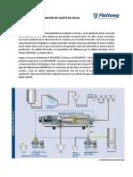 Proceso de Elaboracion de Aceite de Oliva
