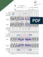 Periodontal Chart - Department of Periodontology - School of Dental Medicine - Universiy of Bern - Switzerland