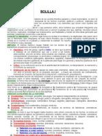 Bolilla I-historia Const. Argentina