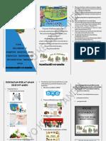 Leaflet Penyuluhan POSYANDU