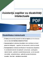 Asistenta Copiilor Cu Dizabilitati Intelectuale