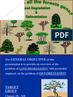 PPT on Deforestation