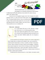 Palariile_ganditoare.doc