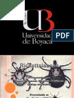 Rickettsia Orientia, Coxiella y Ehrlichia